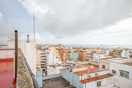 Nice apartment with balcony and parking in trendy Santa Catalina