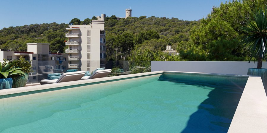 Spectacular penthouse with private roof terrace with pool in Son Armadams