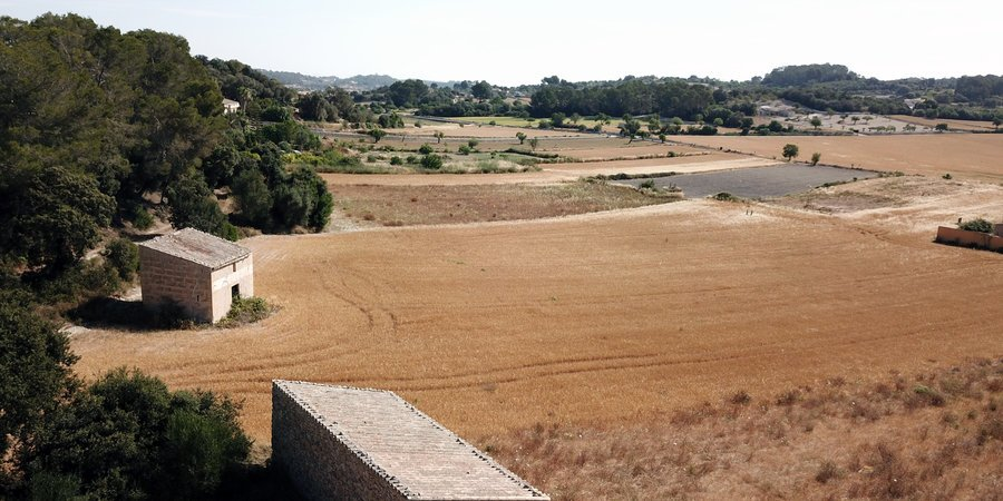 Bebaubares Grundstück in ländlicher Lage unweit von Montuiri